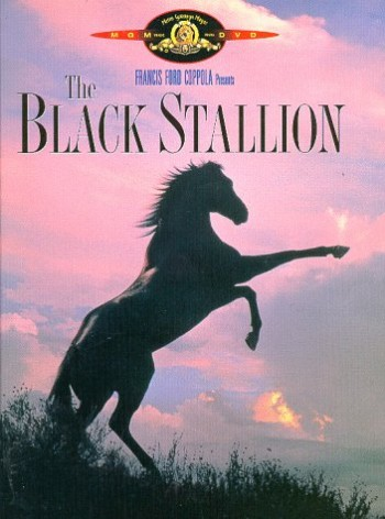 Black-Stallion 2